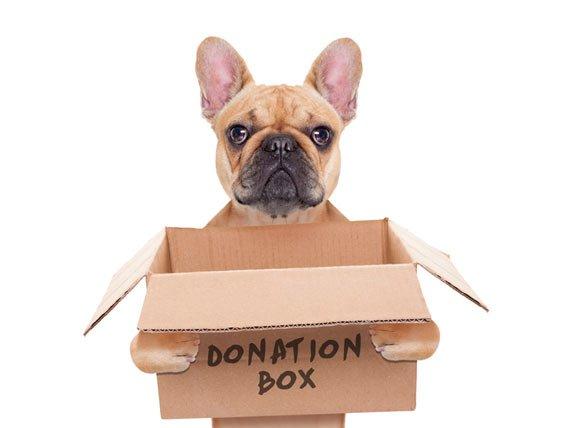 DonationPug